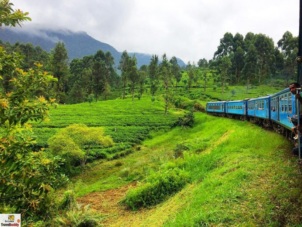 Kandy to Nuwara Eliya by train